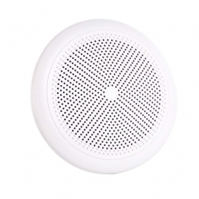 WP 6 weatherproof ceiling speakers